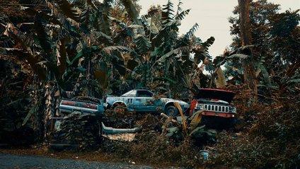 Забуті автомобілі на Гаваях - фото 1