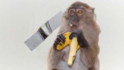 Користувачі мережі висміяли інсталяцію з бананом і скотчем у кумедних мемах - фото 1