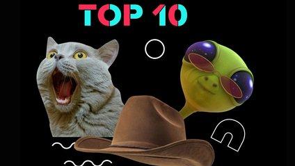 10 найпопулярніших відео TikTok у 2019 році, які розсмішать вас до сліз - фото 1