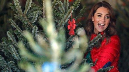 Кейт Міддлтон розповіла, хто ж така ця Мері - фото 1