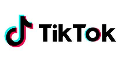 Суворий пасажир літака став зіркою TikTok - фото 1