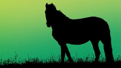 Загадковий тест з конем - фото 1