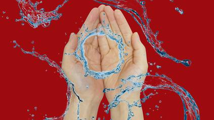 Мийте руки! - фото 1
