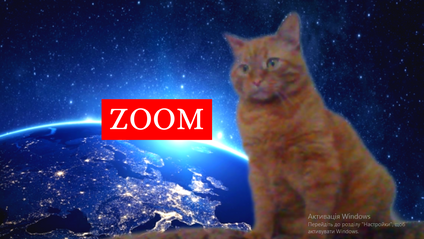 ZOOM - фото 1