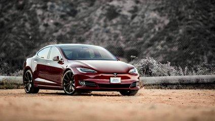Tesla Model S поборовся з конем - фото 1