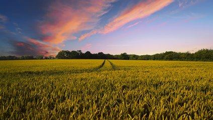 Сучасне землеробство - фото 1