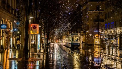 Запах після дощу подобається не лише людям - фото 1