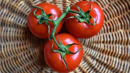 Чи можна тримати помідори в холодильнику - фото 1