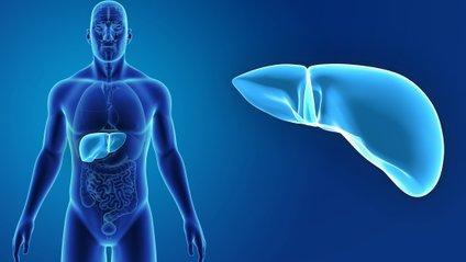 Проблеми з печінкою - фото 1