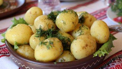 Чому варто їсти картоплю - фото 1