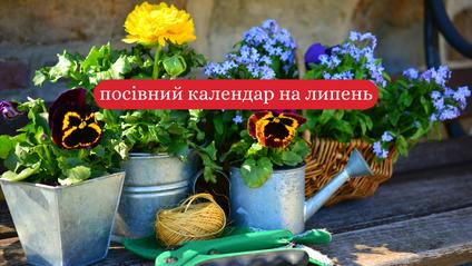 липень: посівний календар для городника - фото 1