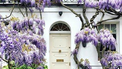 Яскраві будинки Лондона - фото 1