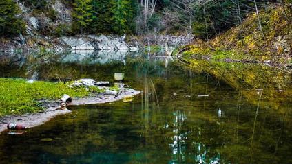 Смарагдове озеро у Верховині - фото 1