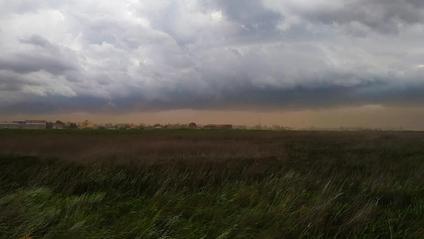Піщана буря на Одещині - фото 1