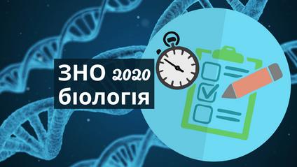 З'явилися відповіді на ЗНО з біології 2020 - фото 1