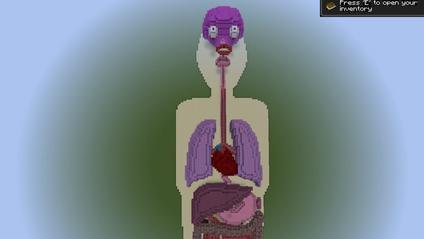 Гру Minecraft перетворили в навчальний матеріал для дітей про діабет - фото 1