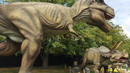 Загалом на торги виставлено 80 моделей динозаврів - фото 1