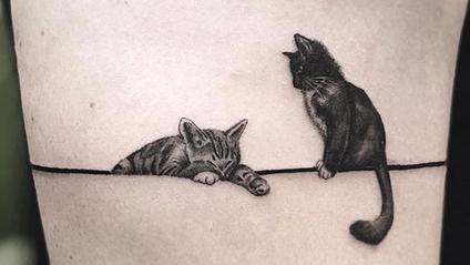 Котяче тату - фото 1