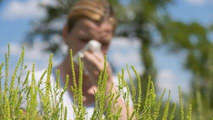 Алергія - фото 1