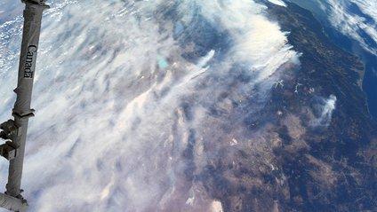Пожежі в Каліфорнії з космосу - фото 1