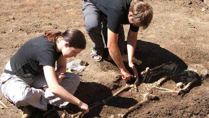 Археологи - фото 1