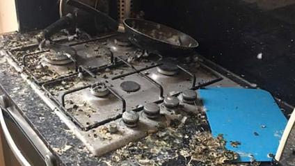 Студента шокував стан його квартири після п'яти місяців карантину: фото - фото 1