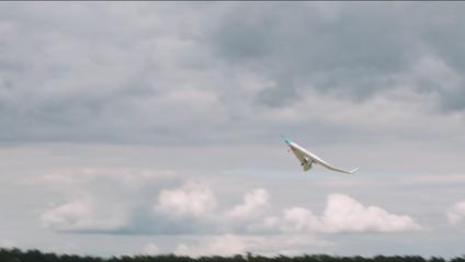 Прототип V-подібного літака успішно пройшов випробування - фото 1