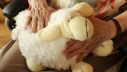 Що подарувати бабусі - фото 1
