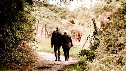 найкращі поради від довгожителів - фото 1