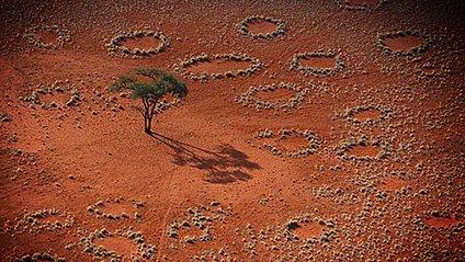 Відьомські кола в Африці - фото 1