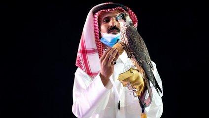У Саудівській Аравії сокола продали за рекордну суму - фото 1
