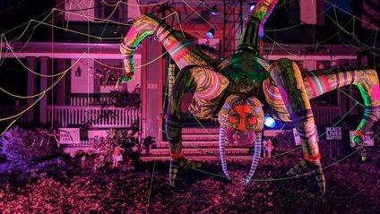 Американець прикрасив будинок до Хелловіну величезним павуком: атмосферні кадри - фото 1