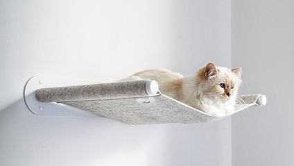 Гамак для котів буде продаватися обмеженим тиражем - фото 1