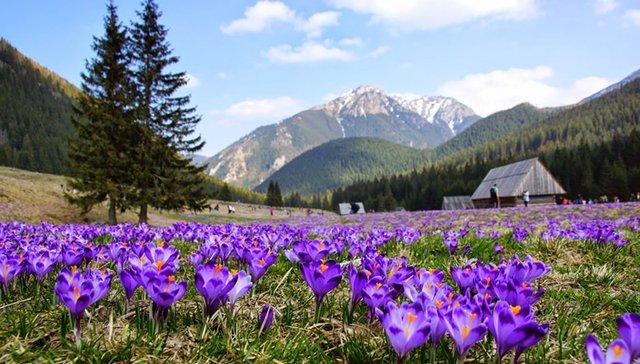 Хохоловська Долина - фото 290097