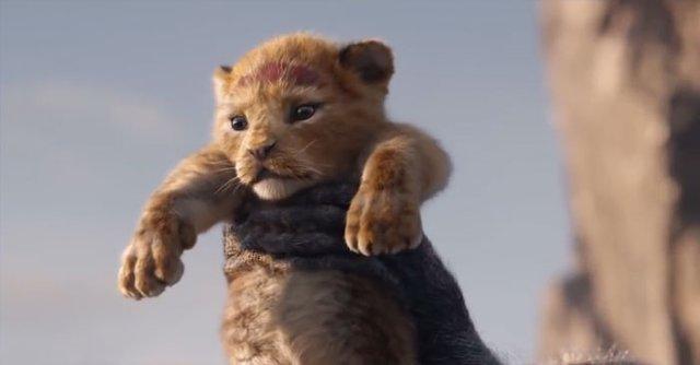 Король Лев: у мережі порівняли анімацію фільмів 1994 та 2019 років - фото 291008