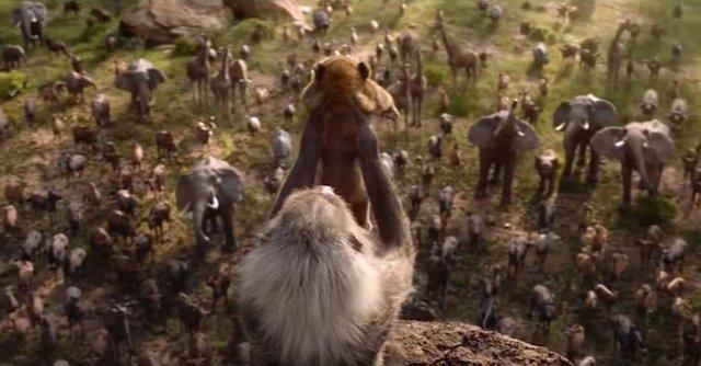 Король Лев: у мережі порівняли анімацію фільмів 1994 та 2019 років - фото 291017