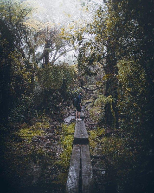 Захопливі подорожі у фотографіях Томаса Лоттера - фото 292016