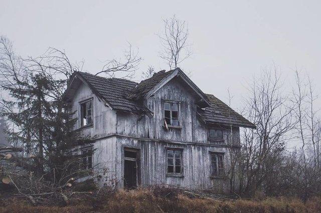 Фотограф показала занедбані помешкання Скандинавії: ефектні кадри - фото 292525