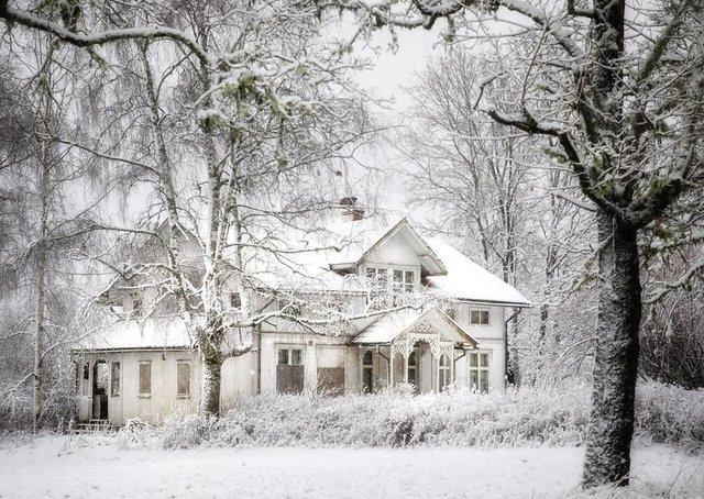 Фотограф показала занедбані помешкання Скандинавії: ефектні кадри - фото 292527