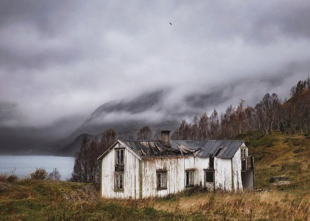 Фотограф показала занедбані помешкання Скандинавії: ефектні кадри - фото 292533