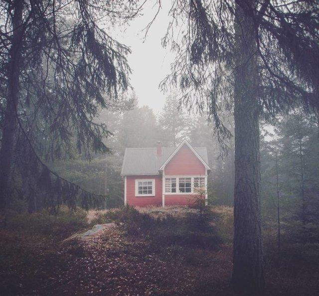 Фотограф показала занедбані помешкання Скандинавії: ефектні кадри - фото 292534