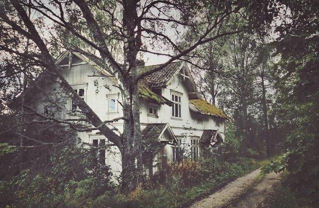 Фотограф показала занедбані помешкання Скандинавії: ефектні кадри - фото 292541