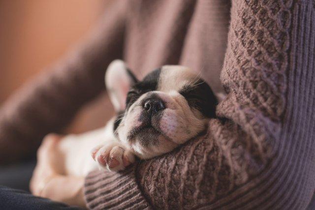 Нагадуємо, що спати потрібно не менше семи годин - фото 292593