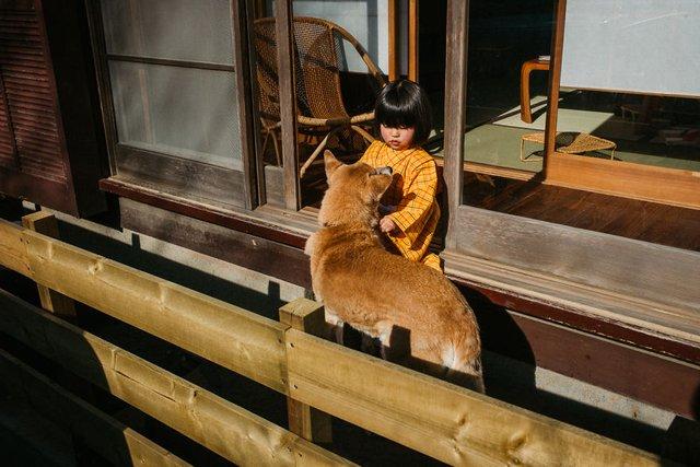 Незвичайні моменти щоденного життя в Японії: яскраві фото - фото 292812