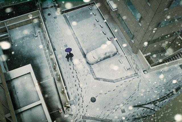 Незвичайні моменти щоденного життя в Японії: яскраві фото - фото 292816