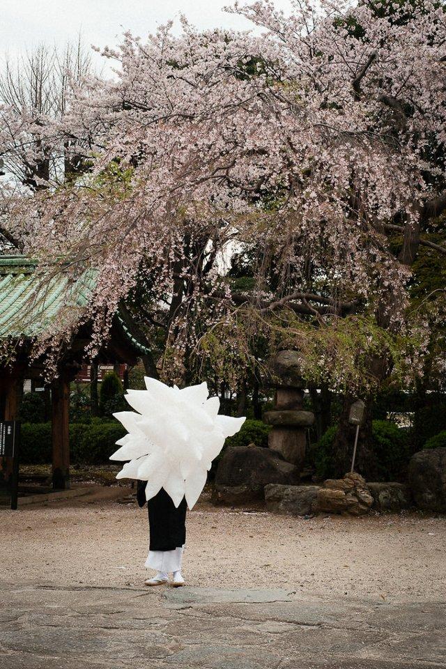 Незвичайні моменти щоденного життя в Японії: яскраві фото - фото 292824