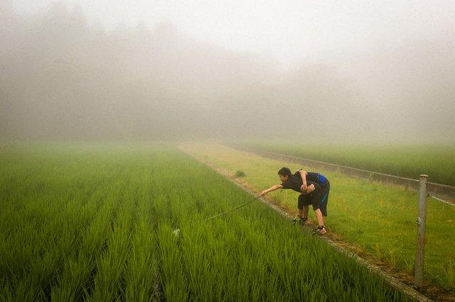 Незвичайні моменти щоденного життя в Японії: яскраві фото - фото 292830