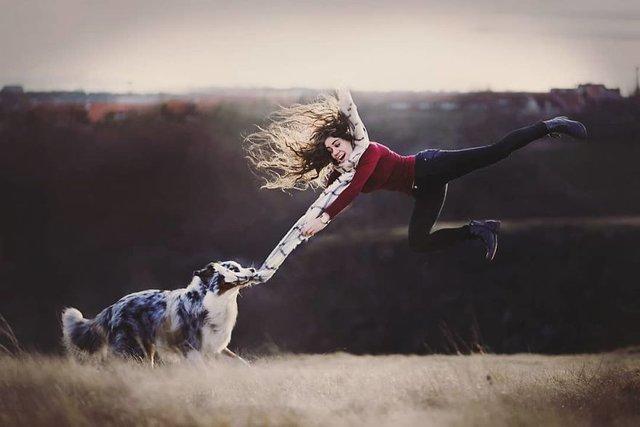 Собаки та подорожі: затишні фото, які змушують усміхнутись - фото 292847