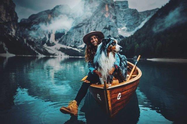 Собаки та подорожі: затишні фото, які змушують усміхнутись - фото 292849