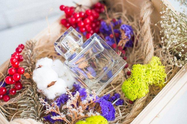 Косметика та парфуми – чудовий подарунок - фото 293111